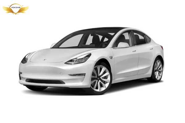 اتومبیل تسلا مدل 3 - زندگینامه ایلان ماسک
